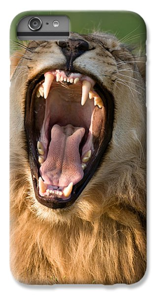 Bass iPhone 7 Plus Case - Lion by Johan Swanepoel