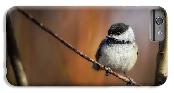 Chickadee iPhone 7 Plus Case - Litlle thing by Christian Duguay