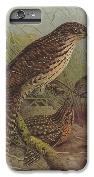 Cuckoo iPhone 7 Plus Case - Long Tailed Cuckoo And Grey Warbler by Dreyer Wildlife Print Collections