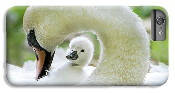 Swan iPhone 7 Plus Case - Love Surrounds by Jacky Parker