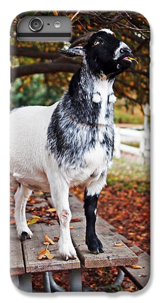 Lunch With Goat IPhone 7 Plus Case