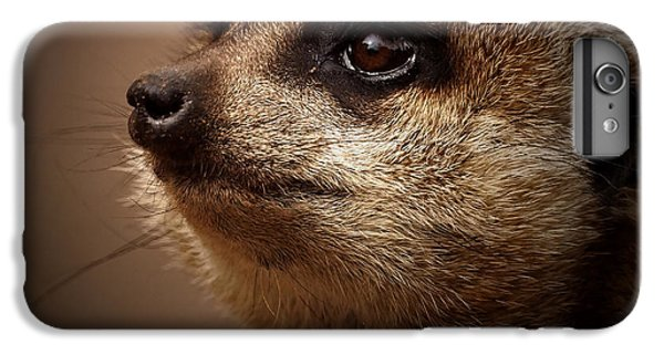Meerkat 6 IPhone 7 Plus Case by Ernie Echols