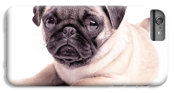Pug iPhone 7 Plus Case - Miss You by Edward Fielding