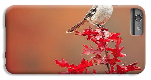 Mockingbird Autumn Square IPhone 7 Plus Case by Bill Wakeley