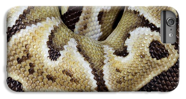 Python iPhone 7 Plus Case - Mojave Royal Python by Nigel Downer