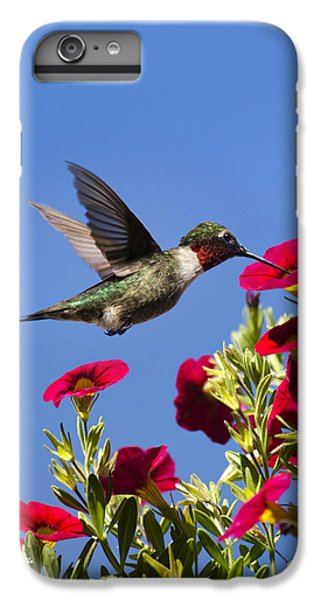 Moments Of Joy IPhone 7 Plus Case by Christina Rollo
