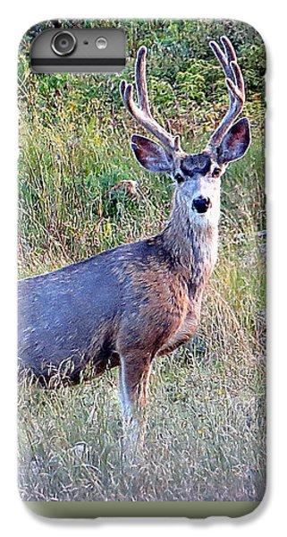 Mule Deer Buck IPhone 7 Plus Case by Karen Shackles