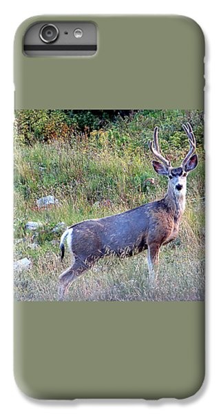 IPhone 7 Plus Case featuring the photograph Mule Deer Buck by Karen Shackles