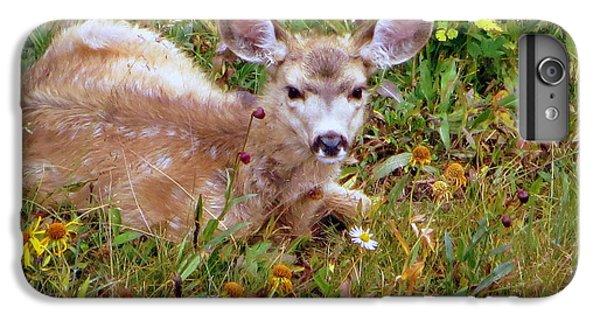 Mule Deer Fawn IPhone 7 Plus Case by Karen Shackles