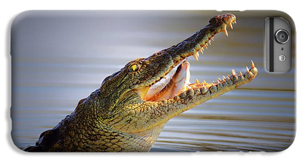 Swallow iPhone 7 Plus Case - Nile Crocodile Swollowing Fish by Johan Swanepoel