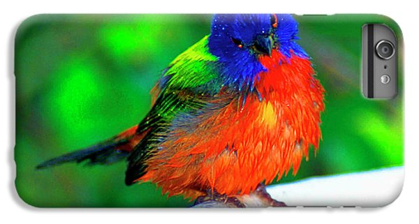 Bunting iPhone 7 Plus Case - North America, Usa, Perplexed Painted by Bernard Friel