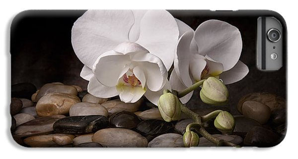 Orchid iPhone 7 Plus Case - Orchid - Sensuous Virtue by Tom Mc Nemar