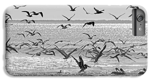Pelican Chaos IPhone 7 Plus Case by Betsy Knapp
