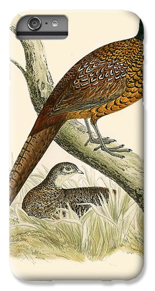 Pheasant iPhone 7 Plus Case - Pheasant by Beverley R Morris
