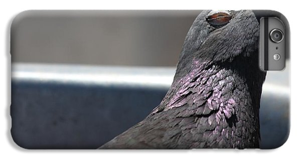 IPhone 7 Plus Case featuring the photograph Pigeon In Ecstasy  by Nathan Rupert