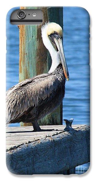 Posing Pelican IPhone 7 Plus Case by Carol Groenen