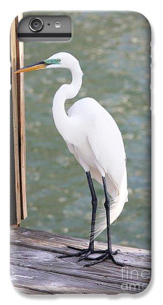 Pretty Great Egret IPhone 7 Plus Case