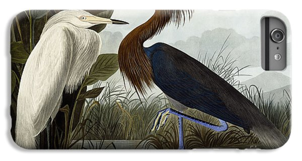 Purple Heron IPhone 7 Plus Case by John James Audubon