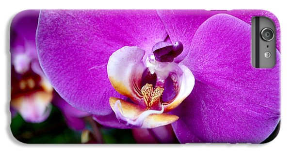 Purple Orchid IPhone 7 Plus Case by Rona Black