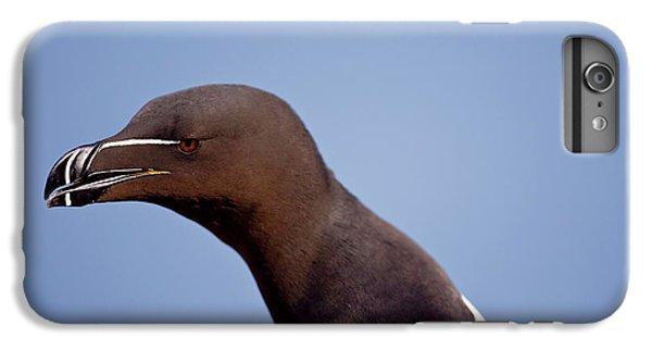 Razorbill iPhone 7 Plus Case - Razorbill Alca Torda,  Portrait by James Silverthorne