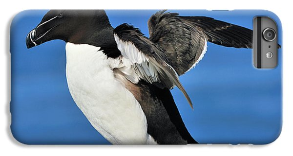 Razorbill IPhone 7 Plus Case by Tony Beck