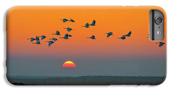 Crane iPhone 7 Plus Case - Red-crowned Crane by Hua Zhu
