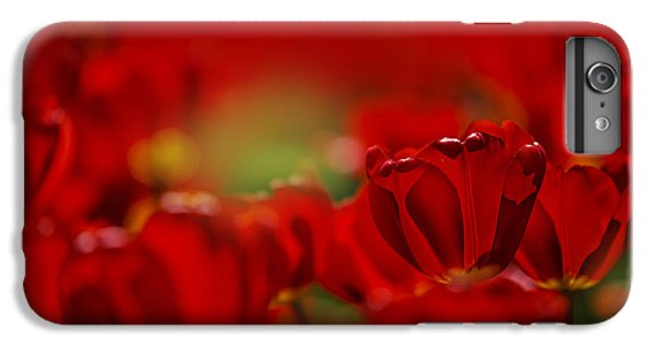 Tulip iPhone 7 Plus Case - Red Tulips by Nailia Schwarz