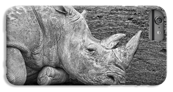 Rhinoceros IPhone 7 Plus Case by Nancy Aurand-Humpf
