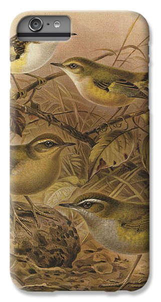 Wren iPhone 7 Plus Case - Rifleman Rock Wren And Bush Wren by Dreyer Wildlife Print Collections