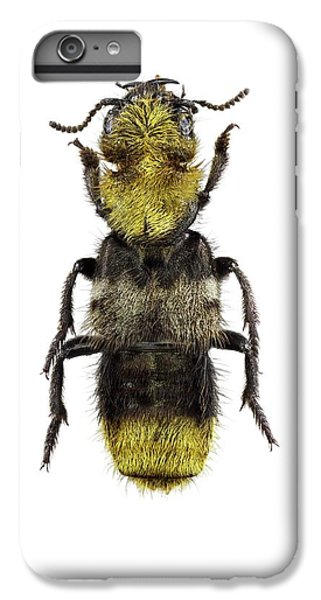 Emu iPhone 7 Plus Case - Rove Beetle by F. Martinez Clavel