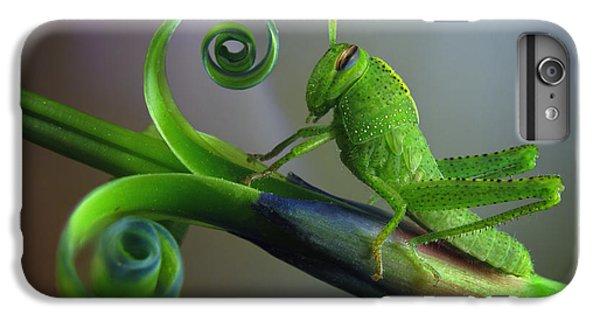Grasshopper iPhone 7 Plus Case - Saltamontes by Jimmy Hoffman