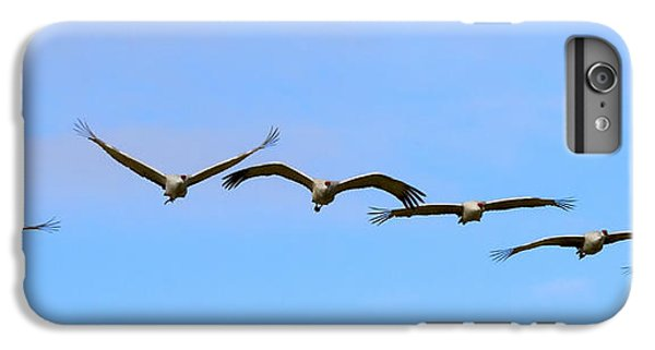 Sandhill Crane Flight Pattern IPhone 7 Plus Case by Mike Dawson