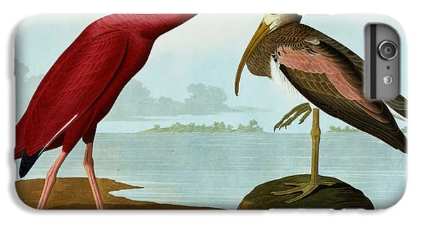 Ibis iPhone 7 Plus Case - Scarlet Ibis by John James Audubon