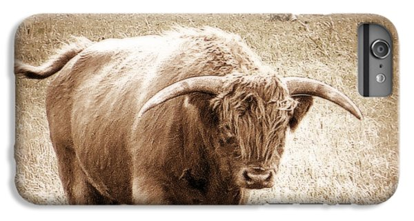 Scottish Highlander Bull IPhone 7 Plus Case by Karen Shackles