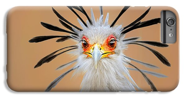 England iPhone 7 Plus Case - Secretary Bird Portrait Close-up Head Shot by Johan Swanepoel