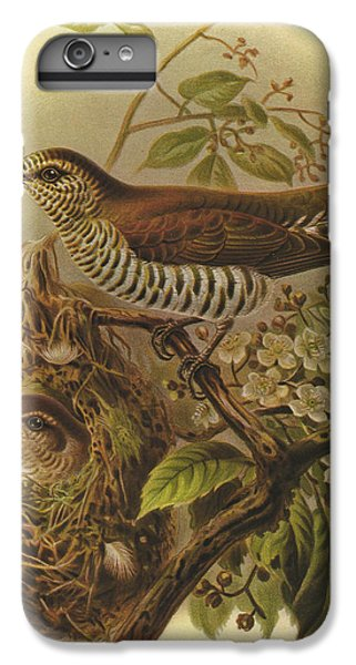 Cuckoo iPhone 7 Plus Case - Shining Cuckoo by Dreyer Wildlife Print Collections