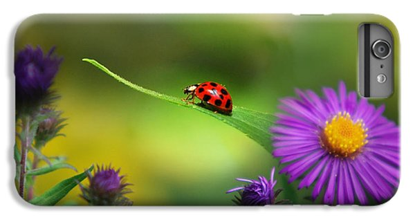 Single In Search IPhone 7 Plus Case by Christina Rollo