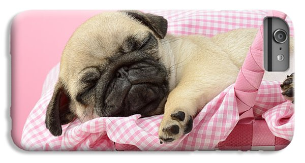 Pug iPhone 7 Plus Case - Sleeping Pug In Pink Basket by MGL Meiklejohn Graphics Licensing