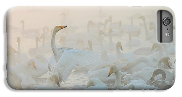 Swan iPhone 7 Plus Case - Song Of The Morning Light by Dmitry Dubikovskiy