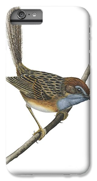Emu iPhone 7 Plus Case - Southern Emu Wren by Anonymous