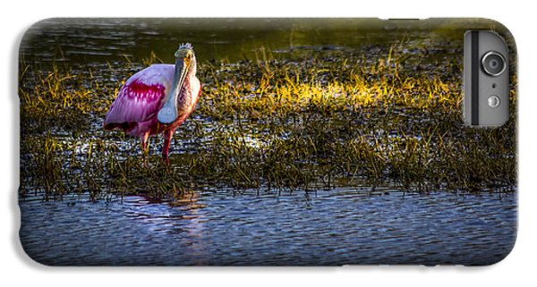Spoonbill iPhone 7 Plus Case - Spotlight by Marvin Spates