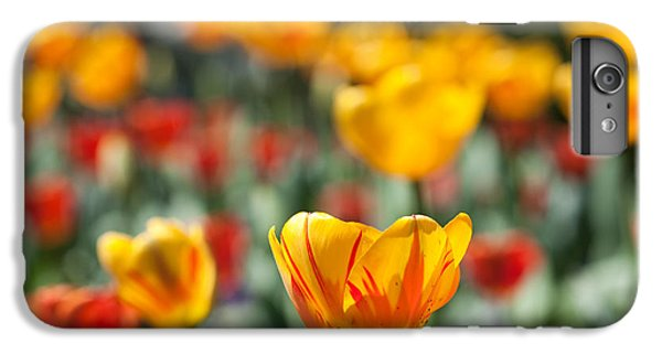 IPhone 7 Plus Case featuring the photograph Spring Is Upon Us by Nathan Rupert