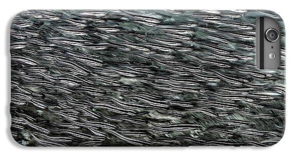 Striped Catfish IPhone 7 Plus Case