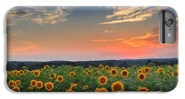 Sunflowers In The Evening IPhone 7 Plus Case