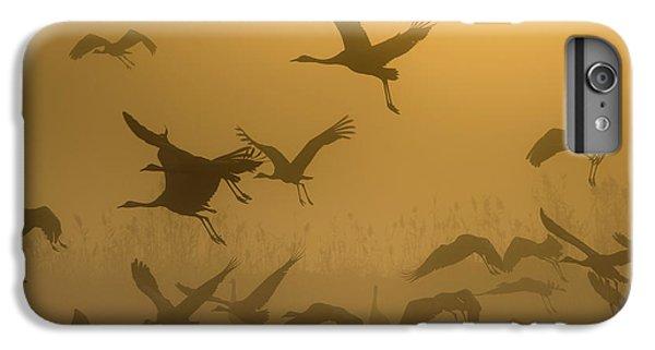 Crane iPhone 7 Plus Case - Sunrise With Cranes by Ronen Rosenblatt