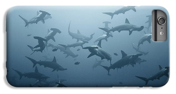 Hammerhead Shark iPhone 7 Plus Case - Swarming by Alexander Safonov