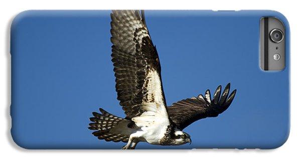 Take Flight IPhone 7 Plus Case by Mike  Dawson