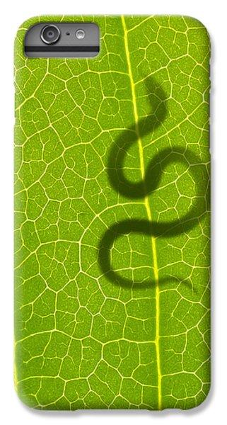 The Hunter IPhone 7 Plus Case