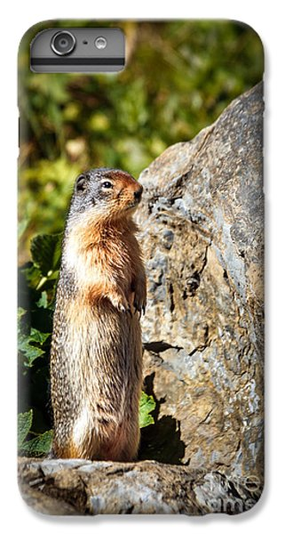 The Marmot IPhone 7 Plus Case by Robert Bales