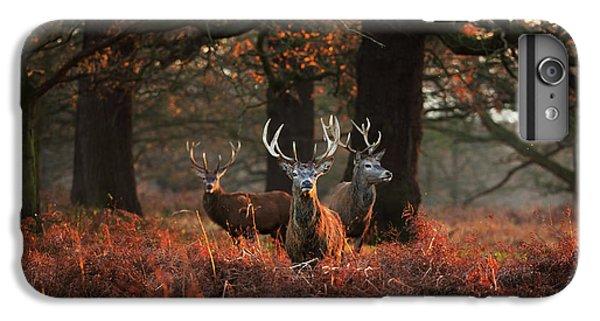 Deer iPhone 7 Plus Case - Three Red Deer, Cervus Elaphus by Alex Saberi